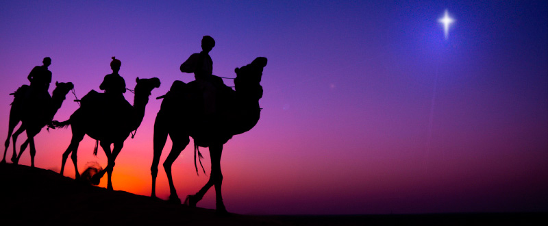 I told you we had to follow the star - this camel might have great 4x4 ability but it hasn't got GPS.